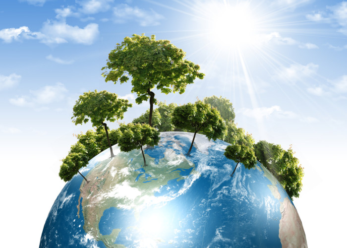 Umweltkonzentrat